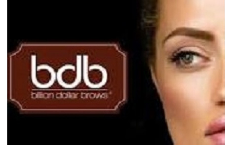 BILLION DOLLAR BROWS - WITH BUSINESS IN A BAG  KIT